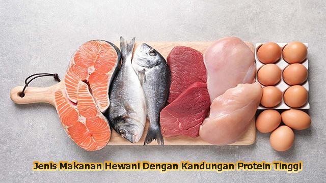 Jenis Makanan Hewani Dengan Kandungan Protein Tinggi